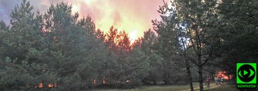 Pożar w Bydgoszczy ugaszony. Spłonęło ponad 20 hektarów