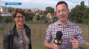 Tomasz Wasilewski rozmawia z Anną Sulimą